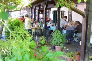 Živi Atelje DK's Chinese Tea Ceremony & Tea in Dugo Selo on 9.6